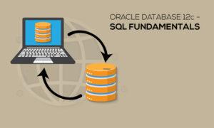 Oracle Database 12c - SQL Fundamentals Live Practice Lab