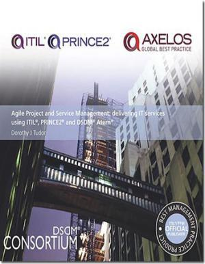 agile project and management