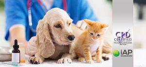 Advanced Certificate in Pet Care Level 3