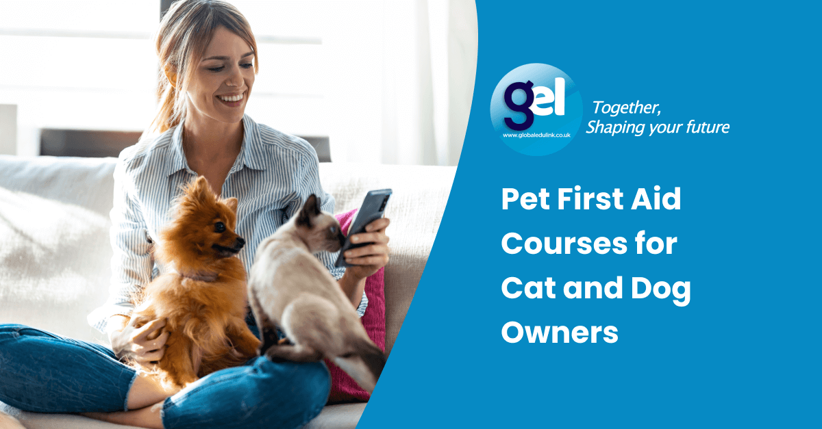 Pet First Aid Courses for Cat and Dog Owners